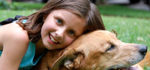 安富保-宠物犬主责任保险